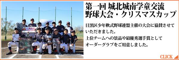 第1回城南城北学童交流野球大会