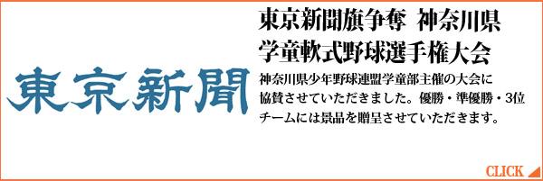 東京新聞旗争奪 神奈川県学童軟式野球選手権大会