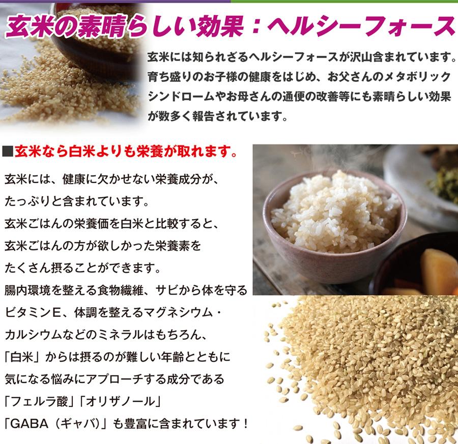 玄米の素晴らしい効果