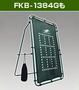 FKB-1384Gも