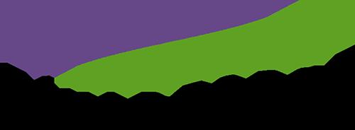 フィールドフォースロゴ
