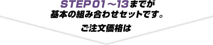 STEP01〜13までが基本の組み合わせセットです。ご注文価格は